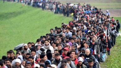удостоверение беженца, какие документы